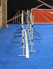 training weave poles