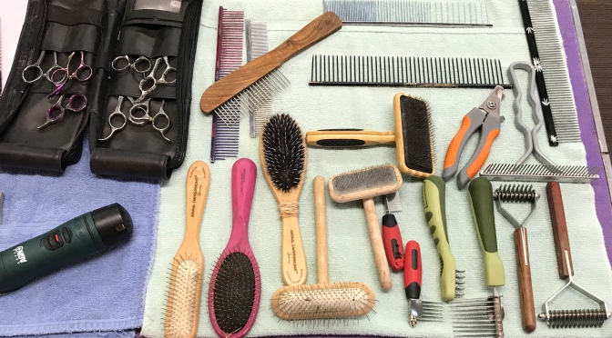 What's in your grooming tool kit?