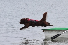 I need to capture this without her life jacket :)