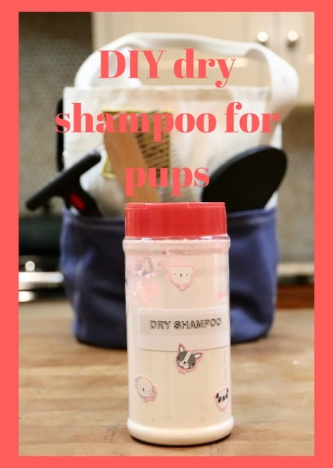 DIY dry shampoo for pups