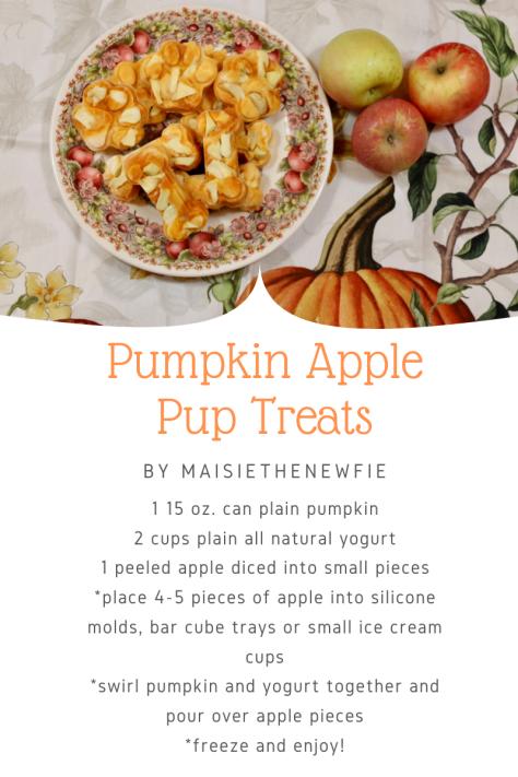 Pumpkin Apple pup treats-3